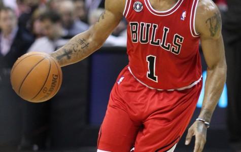 Chicago Bulls' Advocate Center