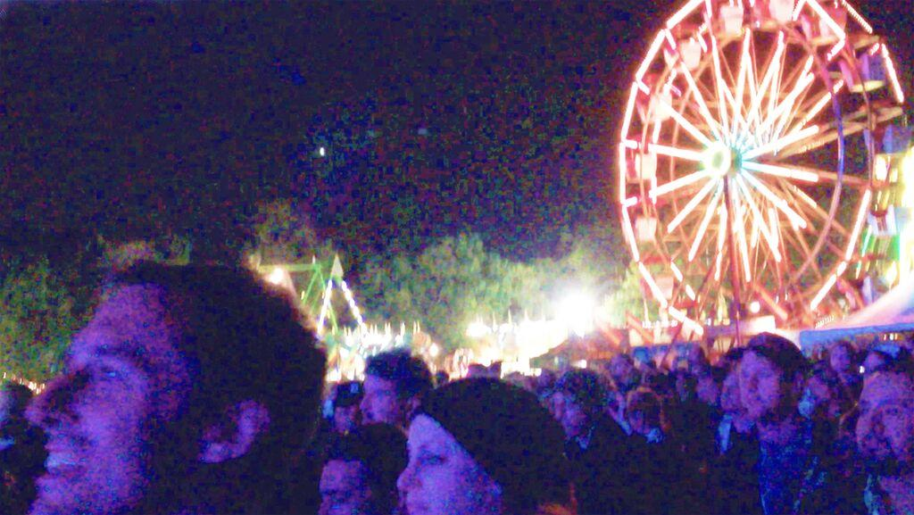 The Ferris wheel at Riot Fest 2014 lit up the September night sky as patrons enjoyed music in Humboldt Park.