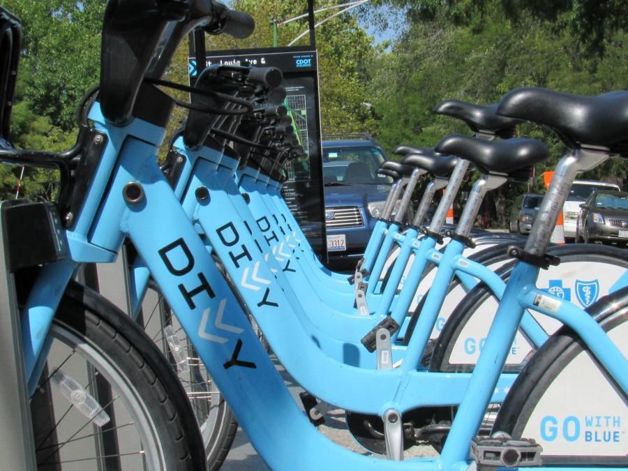 The+distinctive+blue+bikes+near+Bernard+Brommel+Hall