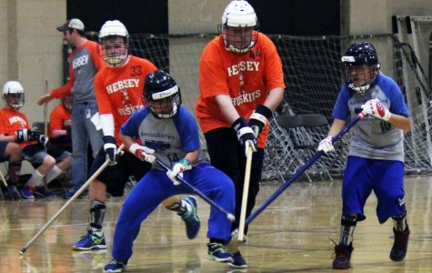 Division 2 teams Koz Junior Stars and Hersey Huskies White go head- to- head