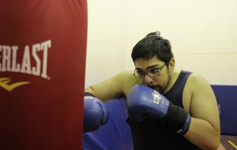Boxing Club set to lace gloves for fall semester