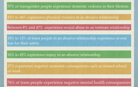 Behind closed doors: The unique nature of transgender domestic violence