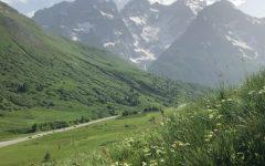 Alps Experience