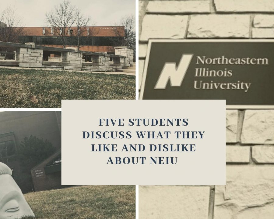 Five students discuss what they like and dislike about NEIU