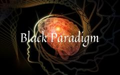 Black Paradigm